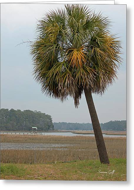 Palmetto Trees Greeting Cards - Carolina Palmetto Greeting Card by Suzanne Gaff