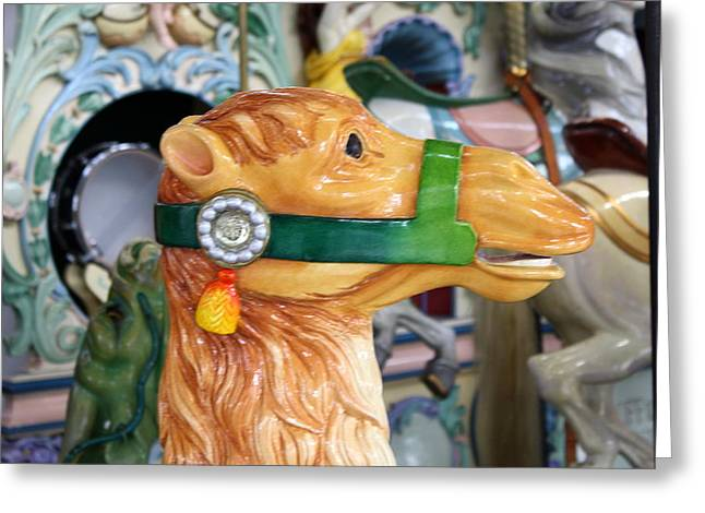 Looff Greeting Cards - Carousel Camel Greeting Card by Anne Babineau