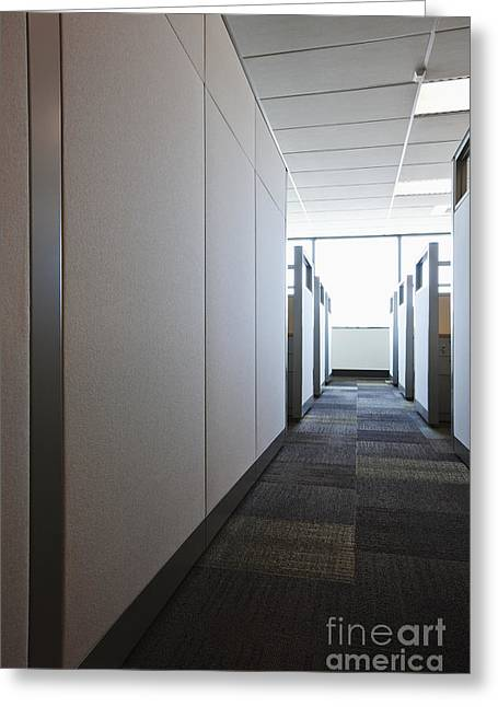 Cubicle Greeting Cards - Carpeted Hall with Office Cubicles Greeting Card by Jetta Productions, Inc
