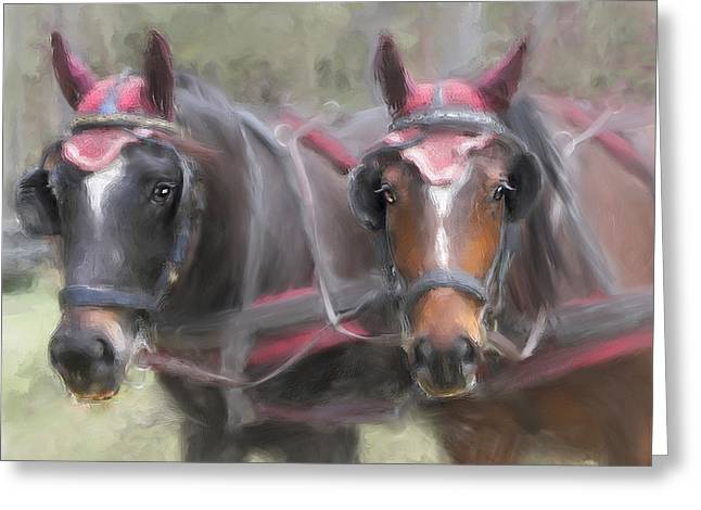 Carriage Horses Pleasure Pair Greeting Card by Connie Moses