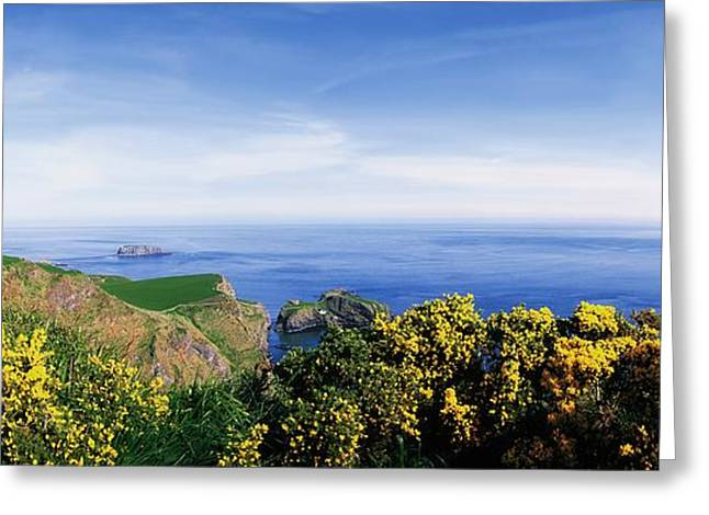 Ocean Panorama Greeting Cards - Carrick-a-rede Rope Bridge, Co Antrim Greeting Card by The Irish Image Collection