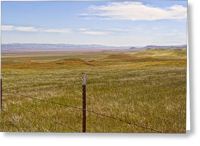 Barbed Wire Fences Greeting Cards - Carriso Plains Greeting Card by Patricia Stalter