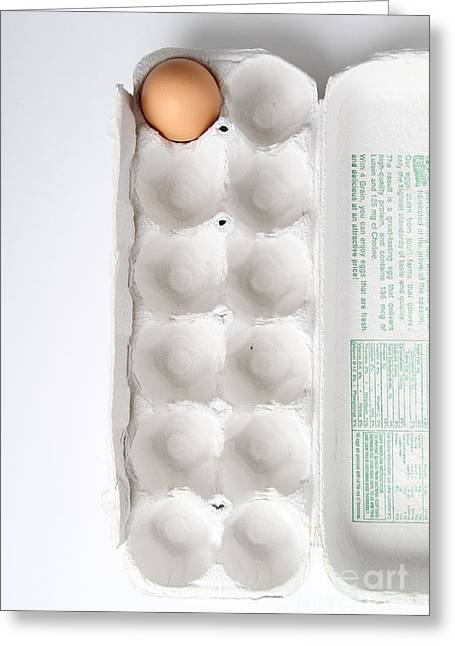 Fresh Eggs Greeting Cards - Carton Of Eggs, 12 Of 13 Greeting Card by Photo Researchers, Inc.