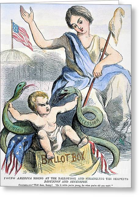 Snake Flag Greeting Cards - Cartoon: Young America Greeting Card by Granger