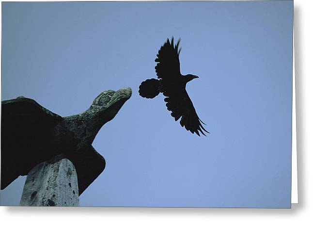Devotional Photographs Greeting Cards - Carved Raven Tops A Totem Pole Greeting Card by Michael Melford
