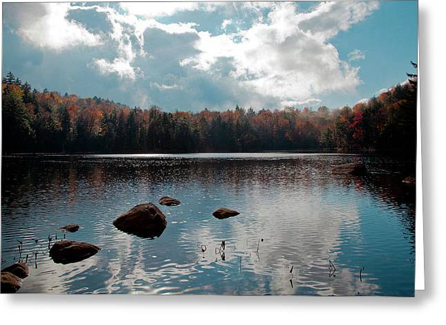Fir Trees Greeting Cards - Cary Lake Greeting Card by David Patterson