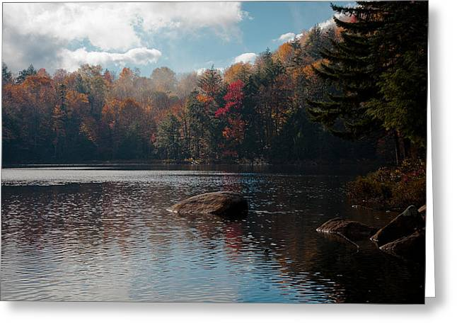 Fir Trees Greeting Cards - Cary Lake in the Adirondacks Greeting Card by David Patterson