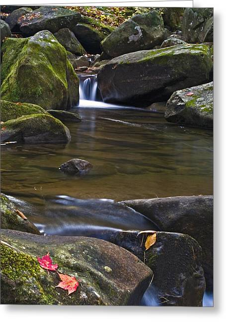 Autumn Photographs Greeting Cards - Cascade At Jones Gap Greeting Card by Rob Travis