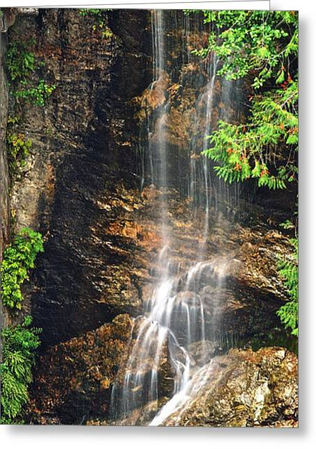 Water Flowing Greeting Cards - Cascade National Park 9089 Greeting Card by Michael Peychich