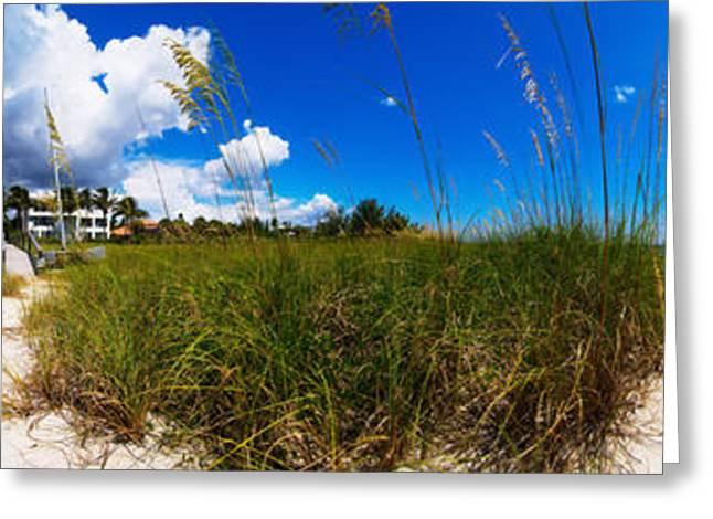 Casey Greeting Cards - Casey Key Beach Access Walkway Greeting Card by Rolf Bertram