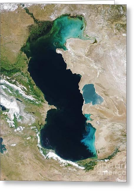 Algal Bloom Greeting Cards - Caspian Sea, Modis, 11 June 2003 Greeting Card by NASA / Science Source