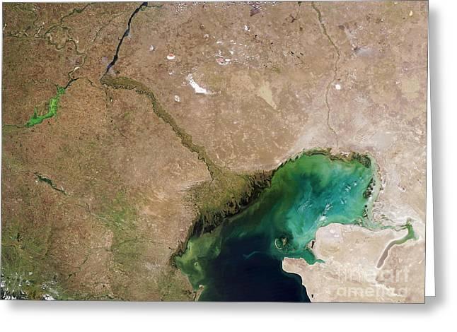 Algal Greeting Cards - Caspian Sea Greeting Card by NASA / Science Source