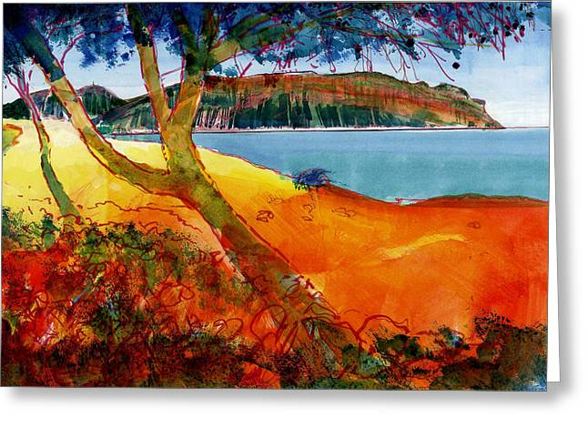 South Of France Mixed Media Greeting Cards - Cassis Vue De La Presquile Greeting Card by David Bates