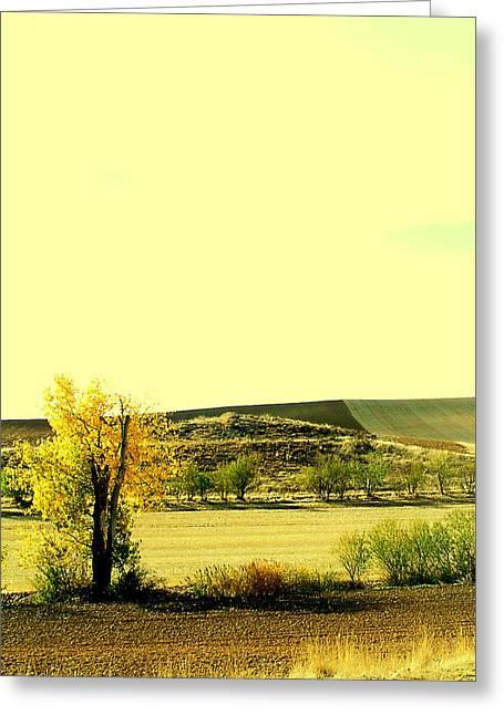 Castilla La Mancha Spain Greeting Card by Guadalupe Nicole Barrionuevo