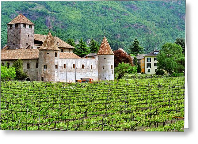 Wine Scene Greeting Cards - Castle and Vineyard in Italy Greeting Card by Greg Matchick
