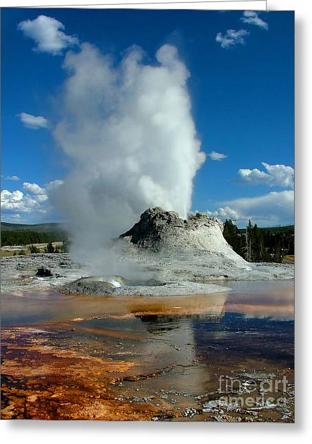 Bacteria Greeting Cards - Castle Geyser Puttin Greeting Card by Katie LaSalle-Lowery