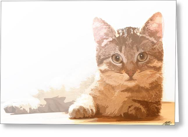 Steve Huang Greeting Cards - Cat Basking in Sunshine Greeting Card by Steve Huang