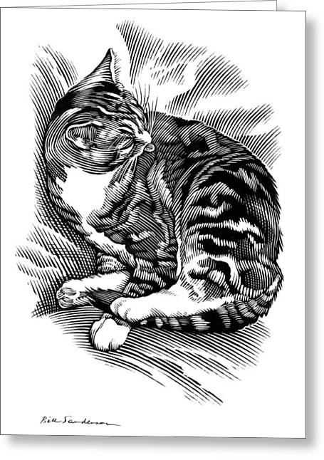Linocut Greeting Cards - Cat Grooming Its Fur, Artwork Greeting Card by Bill Sanderson