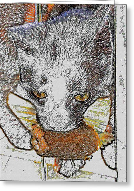 Playing Digital Art Greeting Cards - Cat toy Greeting Card by David Lee Thompson