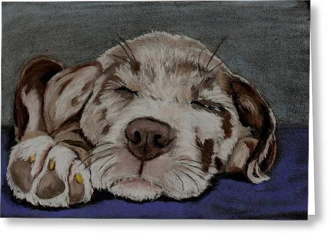 Puppies Pastels Greeting Cards - Catahoula Puppy Greeting Card by Joan Pye
