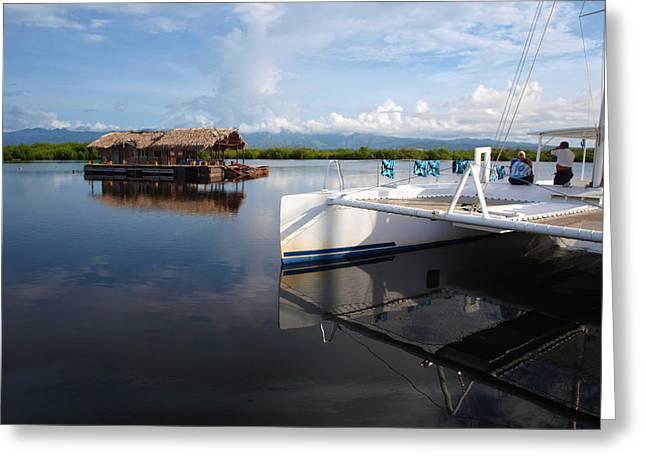 Sailboats Docked Greeting Cards - Catamaran Greeting Card by Philip G