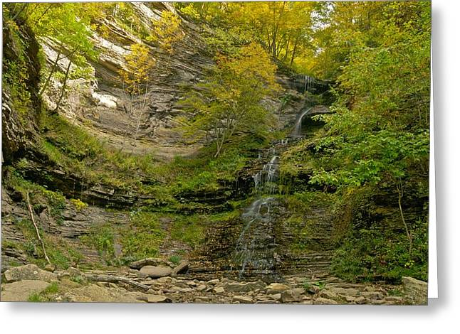 Cane Creek Greeting Cards - Cathedral Falls West Virginia Greeting Card by Michael Peychich