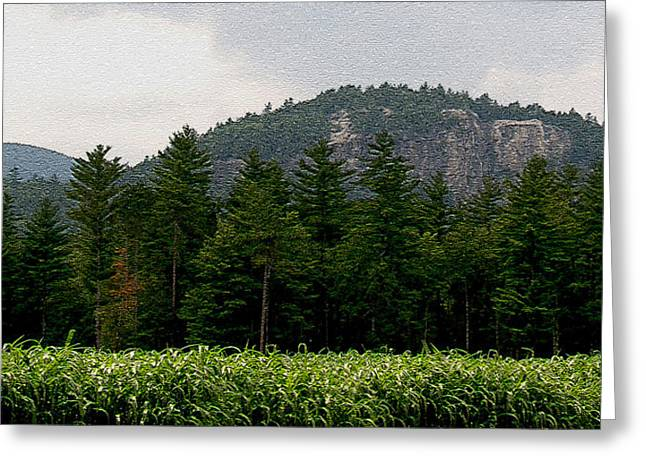 Ledge Greeting Cards - Cathedral Ledge North Conway NH Greeting Card by Paul Gaj