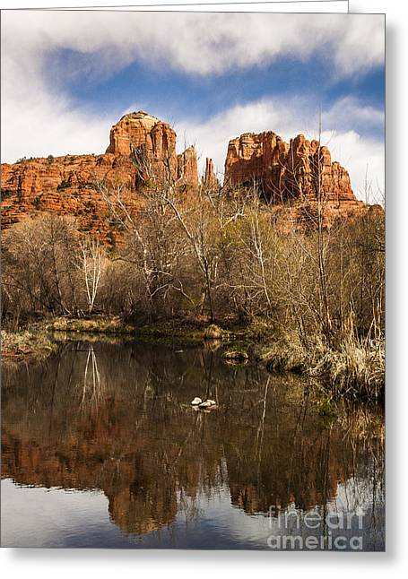 Cathedral Rock Greeting Cards - Cathedral Rock Reflections Portrait 1 Greeting Card by Darcy Michaelchuk