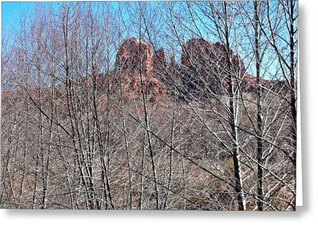 Icon Pyrography Greeting Cards - Cathedral Rock Screen Greeting Card by Gene Garrison