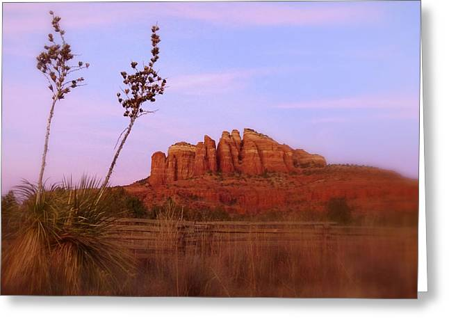 Cathedral Rock Sunset Greeting Card by Cindy Wright