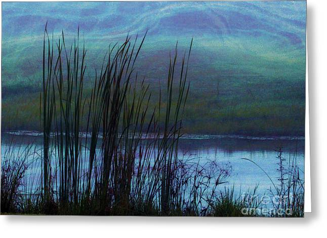Cattails in Mist Greeting Card by Judi Bagwell