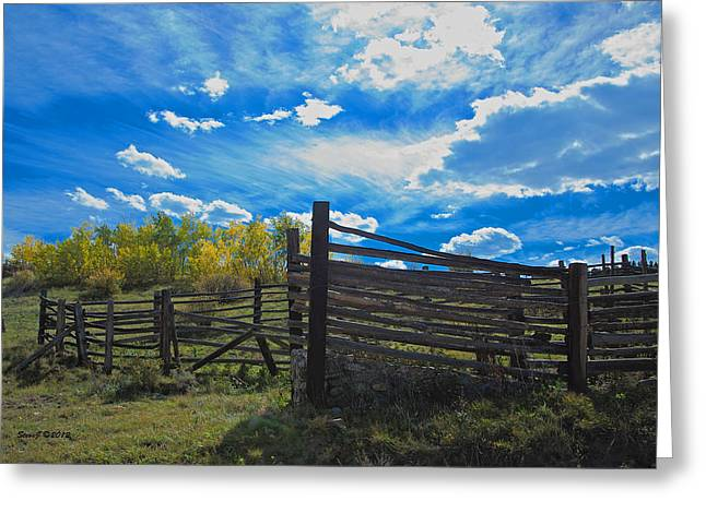 Cattle Chute And Corral Greeting Card by Stephen  Johnson