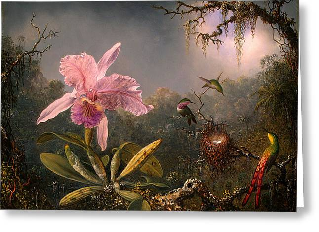 Cattleya Greeting Cards - Cattleya Orchid and Three Hummingbirds Greeting Card by