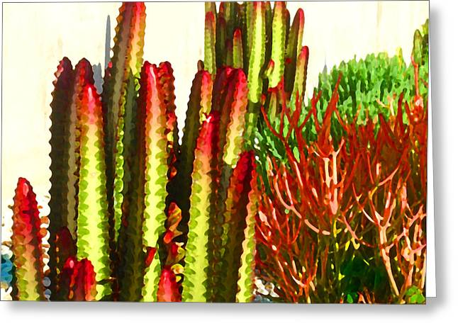 Pond Greeting Cards - Catus Garden Greeting Card by Amy Vangsgard