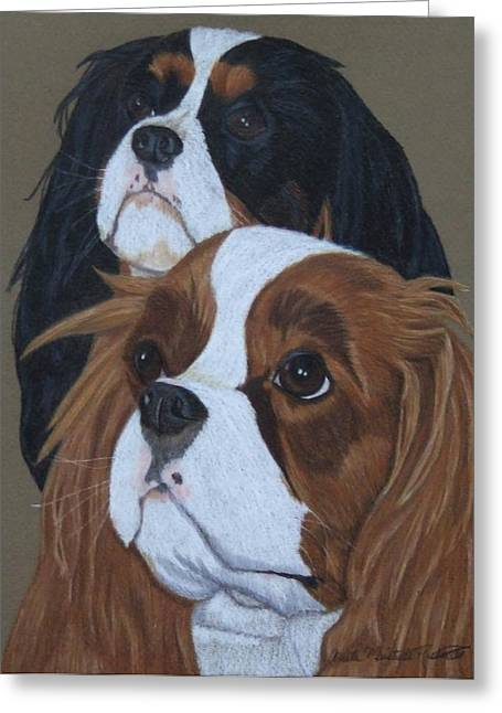 Spaniel Drawings Greeting Cards - Cavalier King Charles Spaniels Greeting Card by Anita Putman