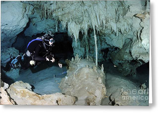 Cenote Greeting Cards - Cavern Diver In Dos Ojos Cenote System Greeting Card by Karen Doody