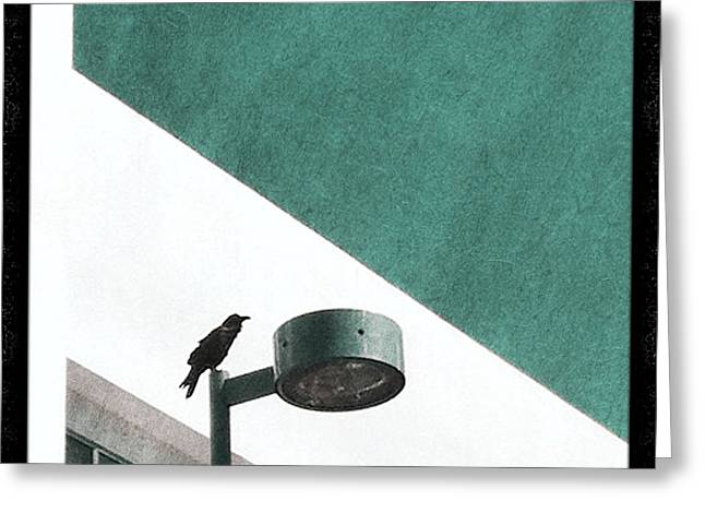 Streetlight Greeting Cards - Caw Greeting Card by Kevin Bergen