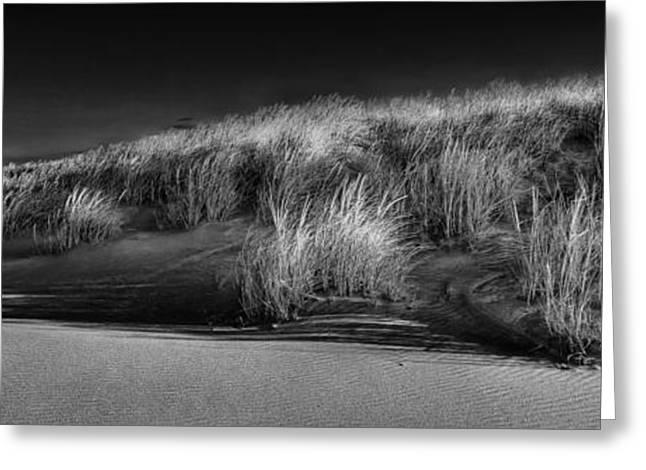 Beach Landscape Greeting Cards - Cedar Beach Greeting Card by Jim Dohms