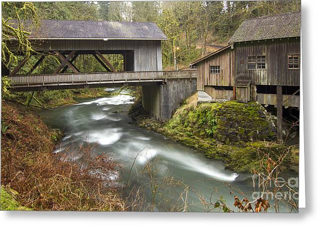 Cedar Creek Greeting Cards - Cedar Creek Greeting Card by Idaho Scenic Images Linda Lantzy