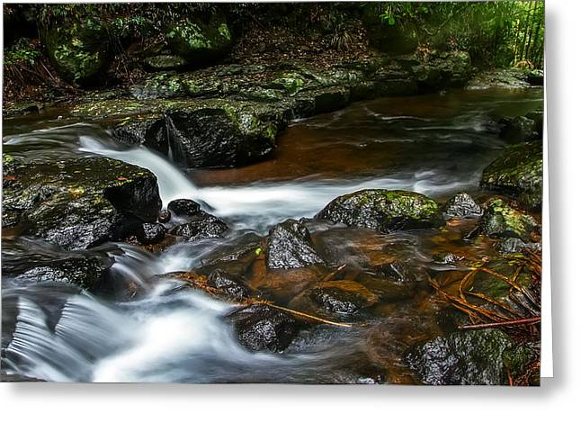 Cedar Creek Greeting Cards - Cedar Creek Greeting Card by Mark Lucey