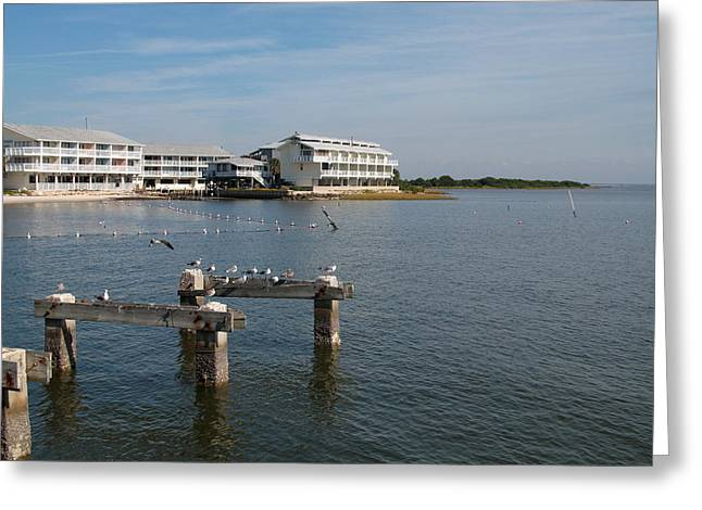 Cedar Key Greeting Card by Christiane Schulze Art And Photography