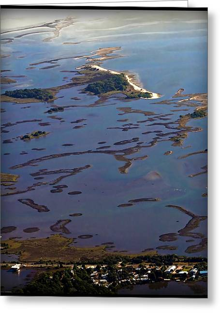 Cedar Key Greeting Cards - Cedar Keys Wilderness Area Greeting Card by Farol Tomson