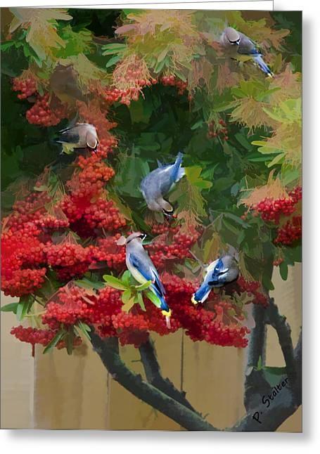 Feeding Birds Greeting Cards - Cedar Waxwings 1 Greeting Card by Patricia Stalter