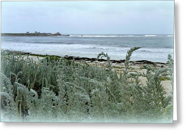 Analogous Greeting Cards - Celadon Seascape Greeting Card by Carla Parris
