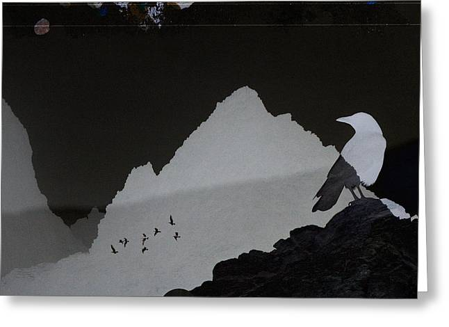 Bird Collage Greeting Cards - Celestial Shadows Greeting Card by Carol Leigh