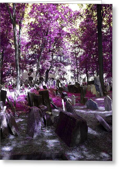 Luis Oscar Sanchez Greeting Cards - Cementerio Judio Greeting Card by Luis oscar Sanchez