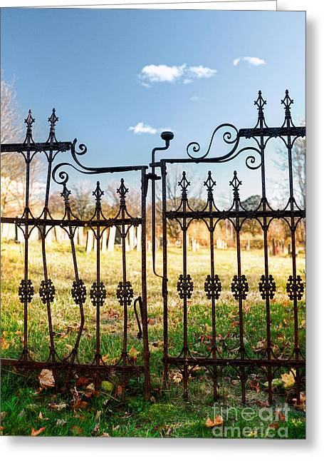 Autumn Graveyard Greeting Cards - Cemetery Gates Greeting Card by HD Connelly