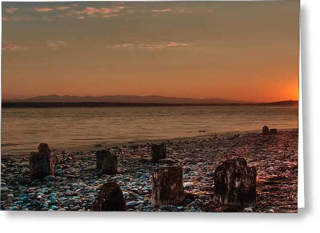 Beaches In Washington Greeting Cards - Center The Last Goodbye Greeting Card by James Heckt