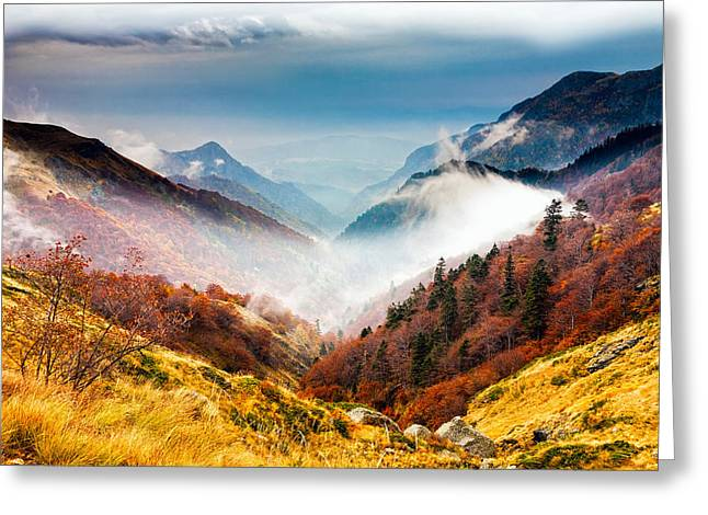 Balkan Greeting Cards - Central Balkan National Park Greeting Card by Evgeni Dinev