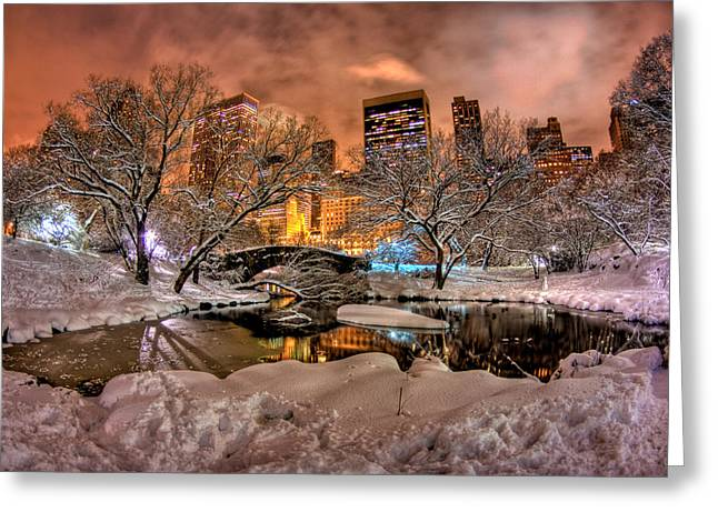 Central Park Winter Greeting Cards - Central Contrast Greeting Card by Joshua Ball